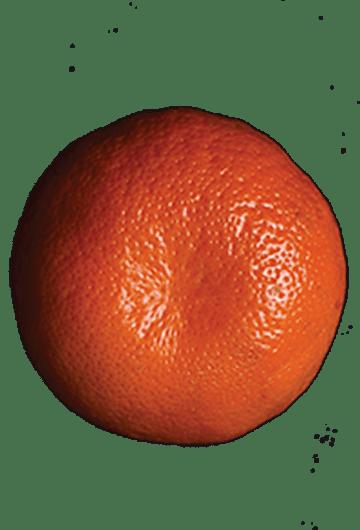 picture-naranja